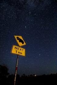wombat-sign